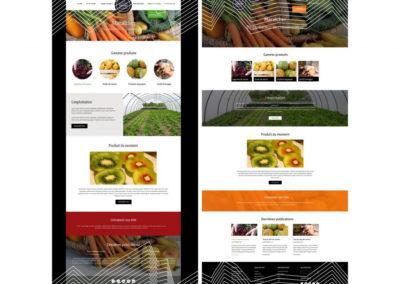creation site ecommerce lyon